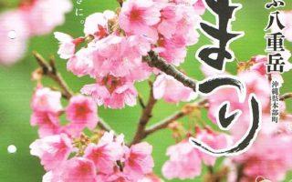 第38回もとぶ八重岳 桜まつり